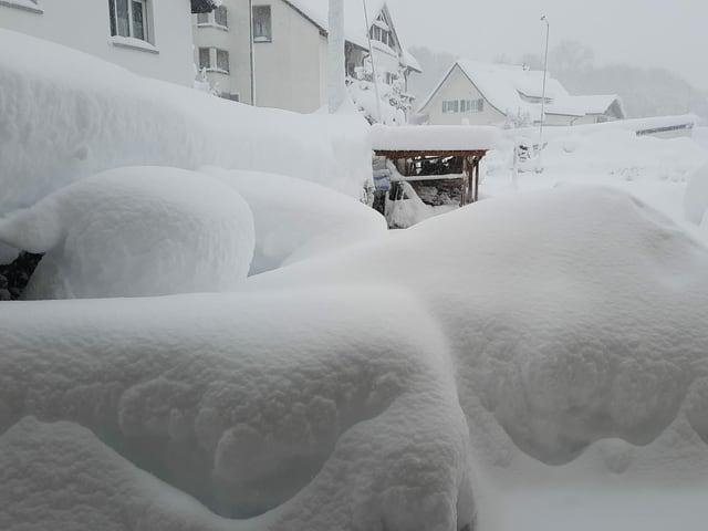 Grosse Schneemassen im Garten.