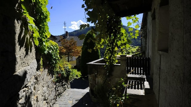 Blick auf das Dorf Berzona im Onsernonetal.