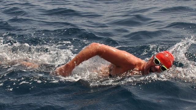 Schwimmer im Wasser.
