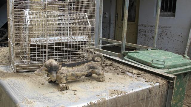 Spuren der Schlammlwaine, die sich über das Tierheim ergoss.
