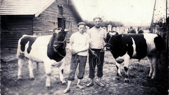Zwei Männer stehen auf einem Hof: einer Hält eine Kuh, der andere einen Stier.