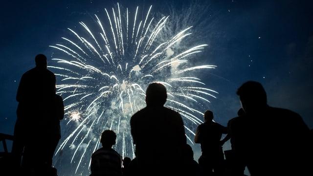 Feuerwerk an einer Bundesfeier.