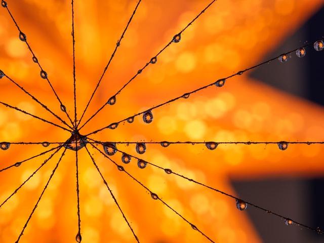 Regentropfen an einer Schnur, die einen leuchtenden Stern widerspiegeln.