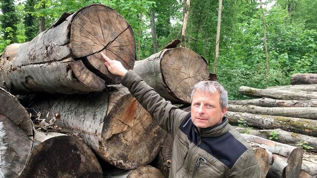 Ein Mann zeigt auf einen Riss im Stamm eines gefällten Baumes.