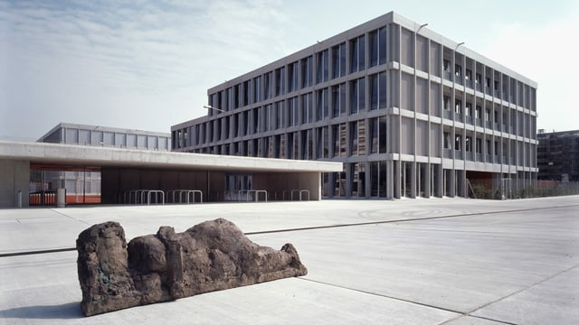Schulhaus Birch in Neu-Oerlikon