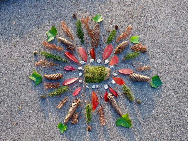 Mandala aus Naturmaterialien