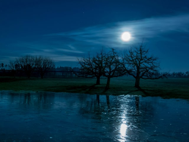 Der Vollmond spiegelt sich am Eis. Opfikon  im Januar 2015. am Ufer kahle Bäume, die Wiesen sind schneefrei.