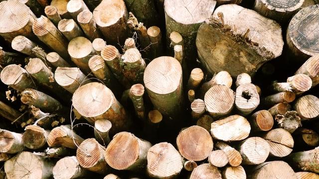 Mehrere Holzstücke Energieholz.