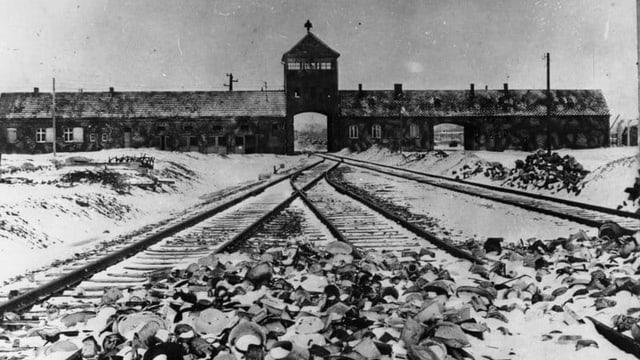 Bild von damaligen KZ Auschwitz.