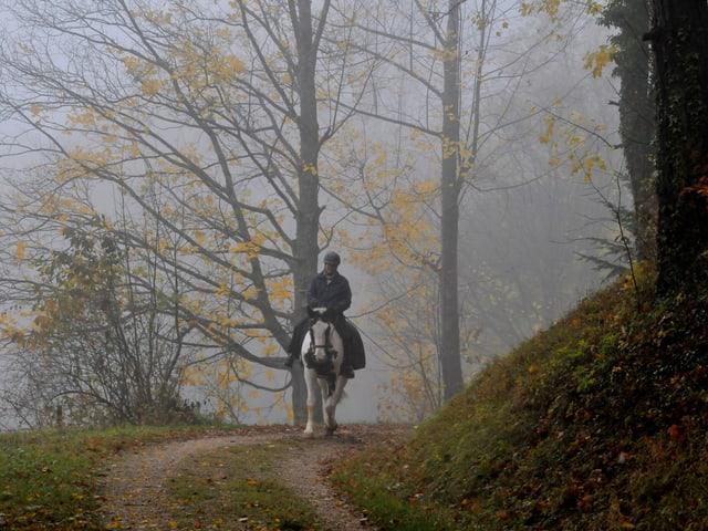 Eine Person reitet auf einem Weg durch den Wald. Dabei hängt dichter Nebel zwischen den Bäumen.