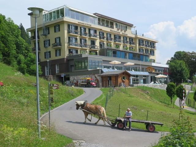 Ein Pferd mit Ladewagen fährt auf der autofreien Strasse in Braunwald