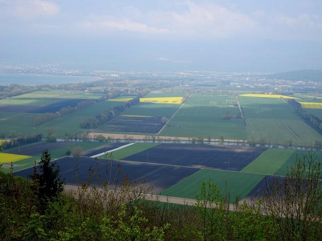 So viele Farben auf einem Bild: gelbe Rapsfelder, blaue Seen, dunkle Äcker und grüne Büsche und Bäume.