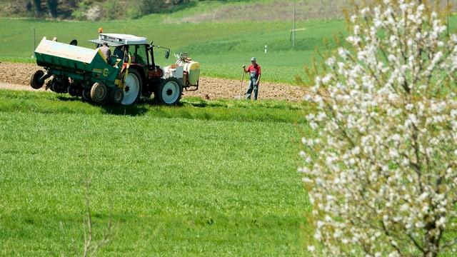Ein Traktor auf einer Wiese, daneben ein Bauer, der sich auf eine Schaufel stützt, vorne ein blühender Baum.