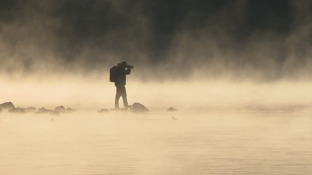 Video «Wozu ist eigentlich Nebel gut?» abspielen