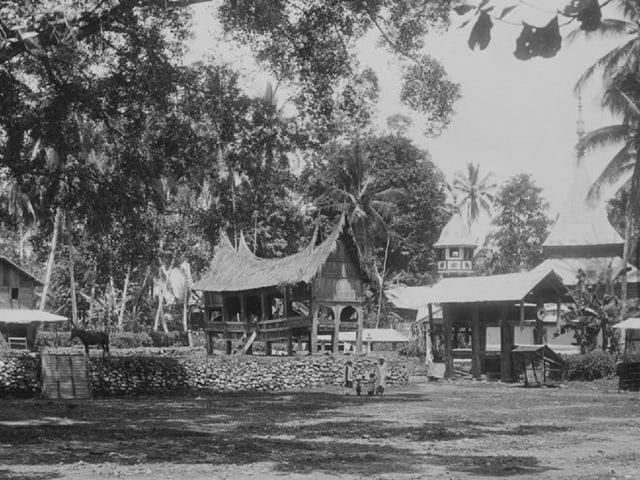 Scola en Indonesia