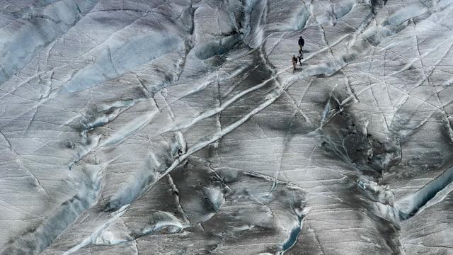 Wandererinnen und Wanderer unterwegs auf dem Gletscher