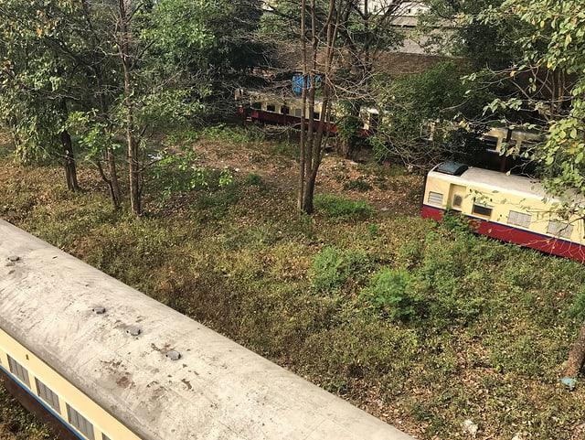 Mehrere Zugwaggons stehen scheinbar mitten im Dschungel zwischen Sträuchern und Bäumen.