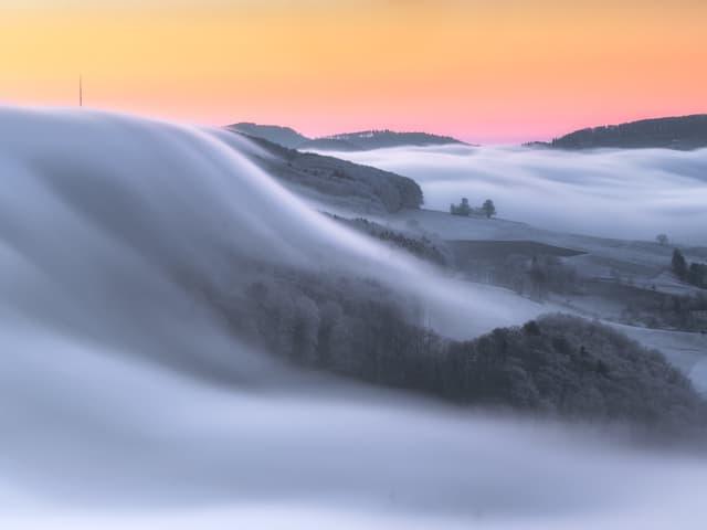 Nebelschwaden über einer mit Reif überzogenen Landschaft.
