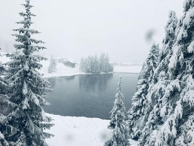 Tiefer Winter um einen See.