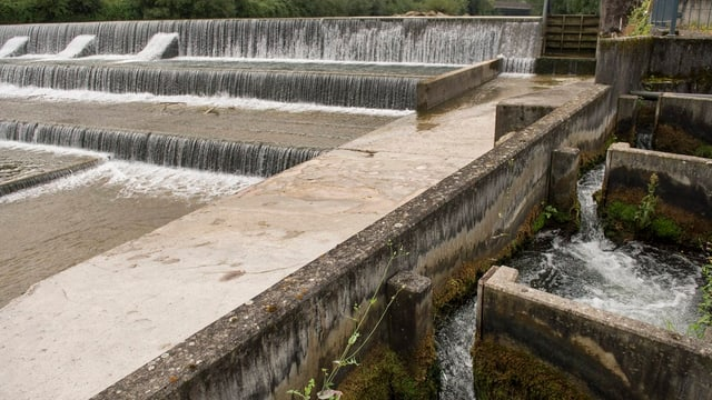 Bild einer Flussverbauung mit einer Fischtreppe.