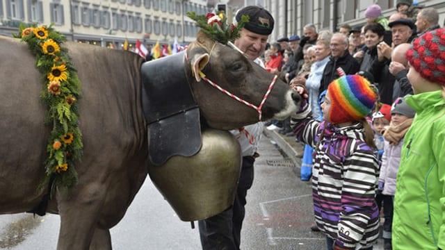 Kuh und Menschen an einem Festumzug.
