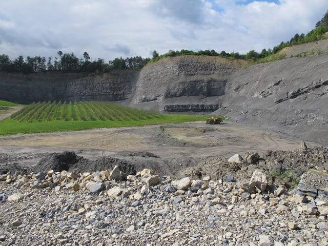 Steinbruch mit Plantage