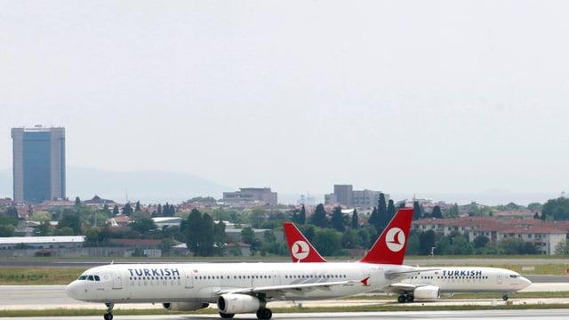 aviuns da la turkish airline