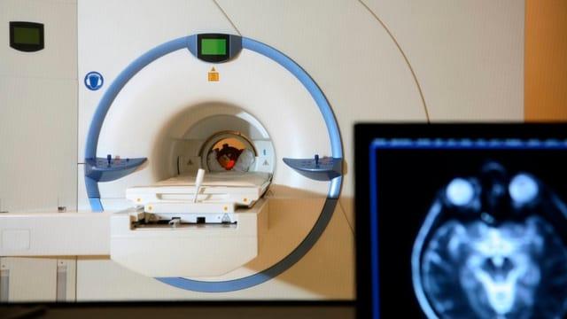 In der Luzerner Klinik St. Anna werden auch Tiere radiologisch untersucht.
