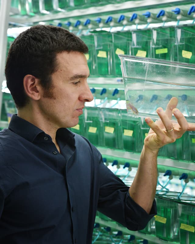 Der Biologe Dario Valenzano hält einen Behälter mit einem Fisch und schaut das Tier an.