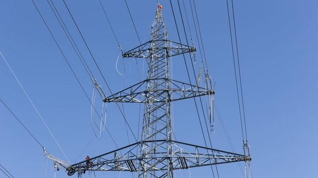Purtret d'ina pitga d'electricitad.