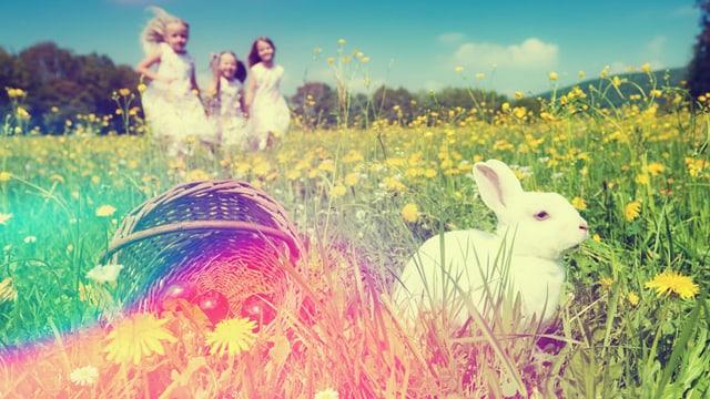 Mädchen rennen auf ein Osternest zu, das in einer Wiese liegt.