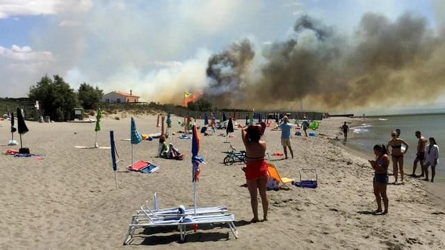 Feuer im Naturreservat Padule del Chiarone nahe Capalbio.