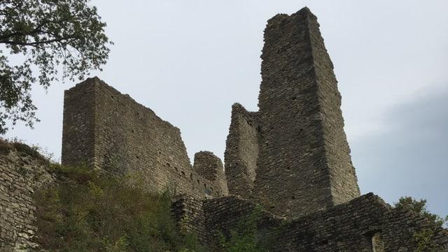 Ruine mit Mauer des Wohnturms