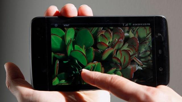 Das Smartphone steuert in einem intelligenten Heim sämtliche Haushaltsgeräte.