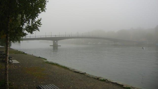 Der Rhein bei Konstanz