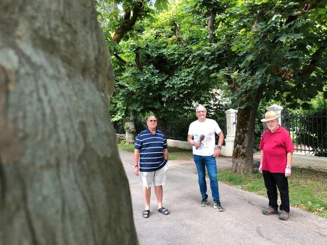 Drei Männer unter Bäumen.