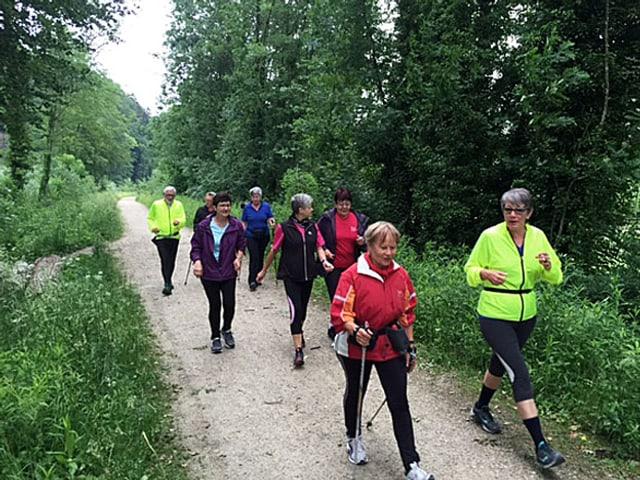 Walkinggruppe unterwegs auf einem Waldweg.