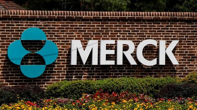 Logo von Merck MSD in Amerika