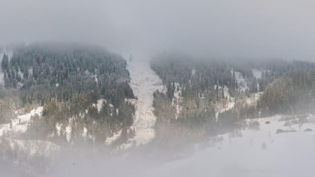 La lavina da l'Alp da Schlans è vegnida fin 200 meters sur la via chantunala.