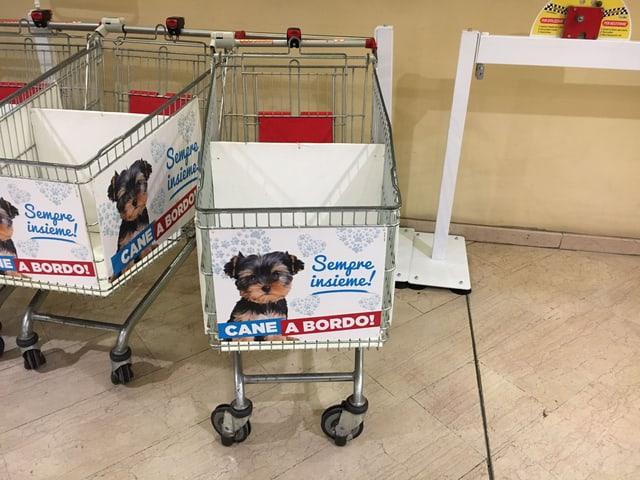 Einkaufswagen mit Korb für Hundetransport.
