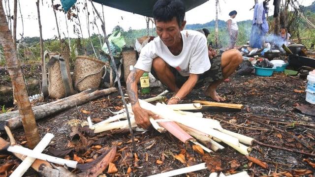 Video «Die Dayak müssen für ihr Land kämpfen» abspielen