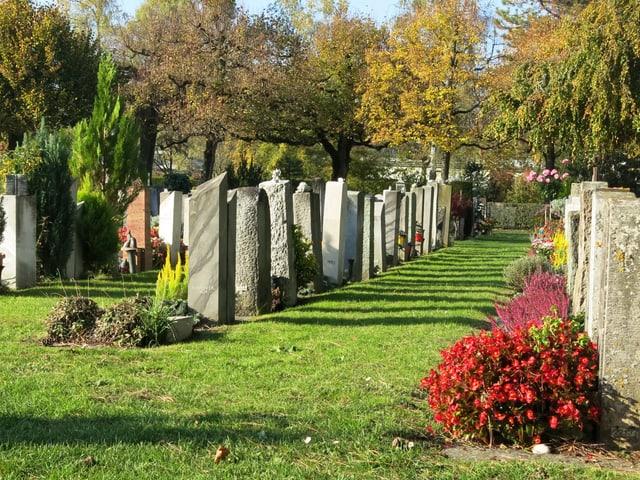 Grabreihen mit Grabsteinen