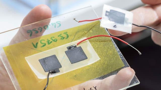 Die Batterie der Zukunft? Biologisch abbaubare Stromlieferanten