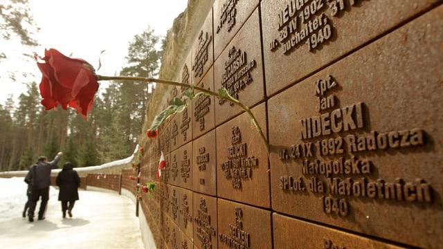 Eine Rose steckt zwischen zwei Erinnerungstafeln der Gedenkstätte zum Massaker in Katyn.