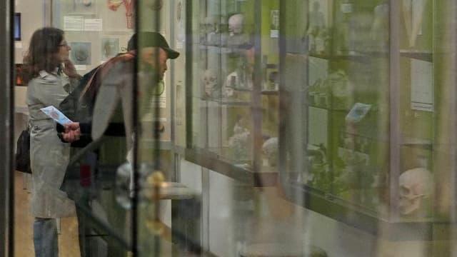 Ein Mann und eine Frau vor einer Vitrine mit Totnschädeln.