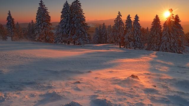 Sonnenuntergang am Creux du Van. Die Bise fegt den Schnee über die Weiden.