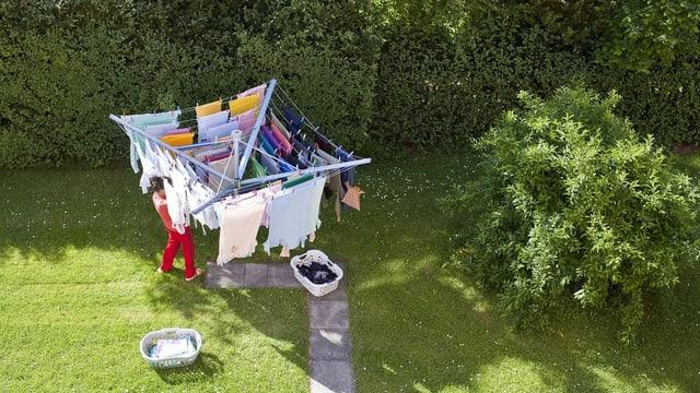 STEWI-Wäschespinne