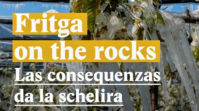 Laschar ir video «Fritga on the rocks - Las consequenzas da la schelira»