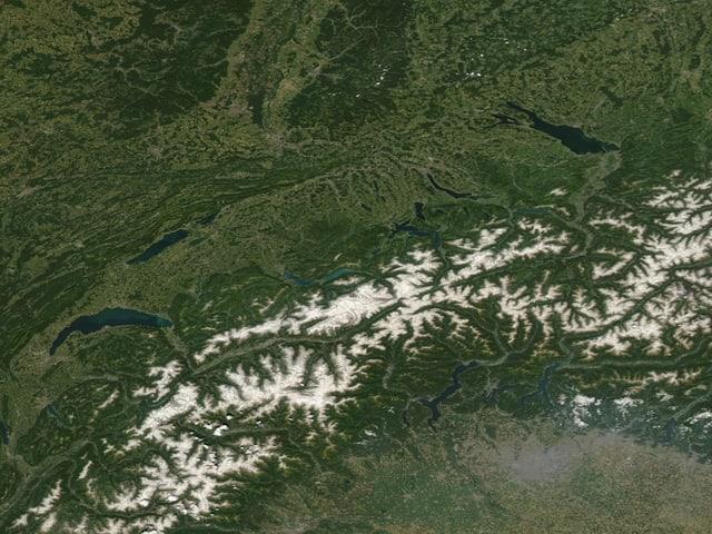 Grünes Satellitenbild der Schweiz