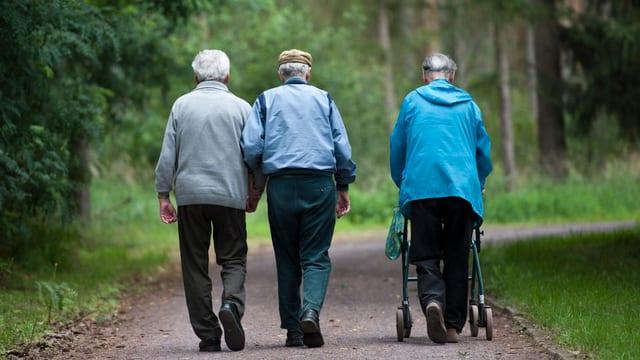 Drei Rentner spazieren durch den Wald.